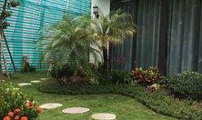 Đá thớt rải sân vườn làm bước dặm